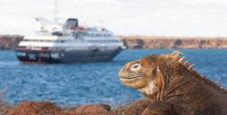 Silversea Galapagos Expedition