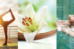 Oceania Cruises Aquamar Spa + Vitality Center